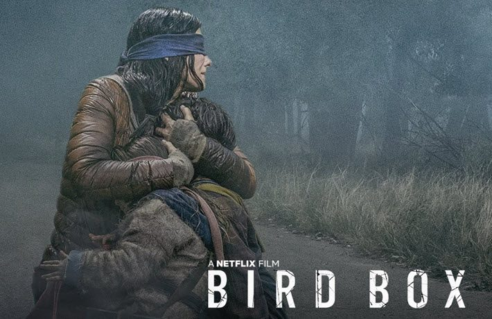 Netflix Bird Box Movie Poster