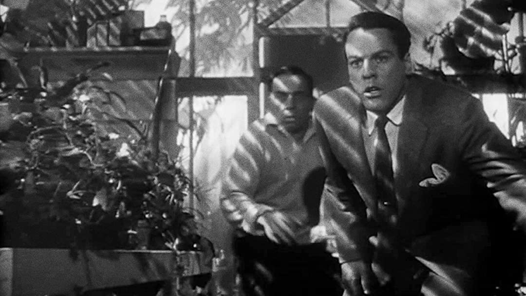 Invasion of the Body Snatchers movie Scene