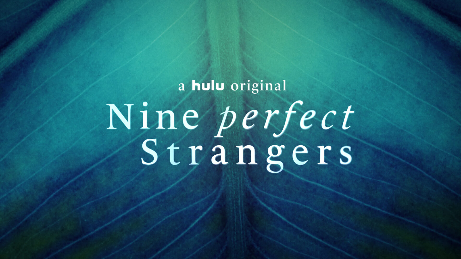 Will Nine Perfect Strangers Release on Netflix   Gizmo Story