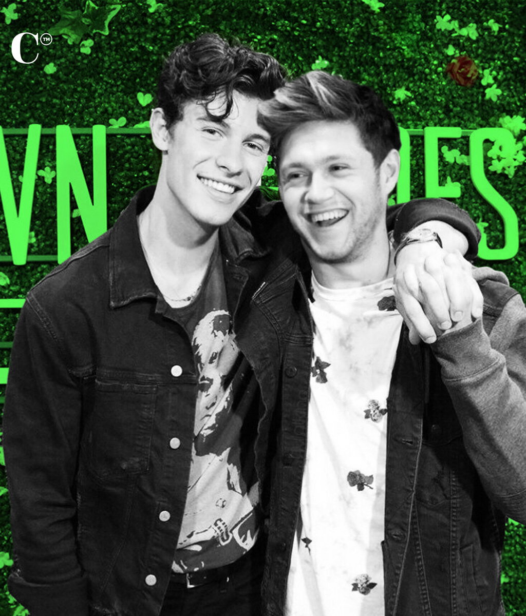 Are Niall Horan and Shawn Mendes Going To Finally Collab??